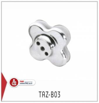 TAZ-B03
