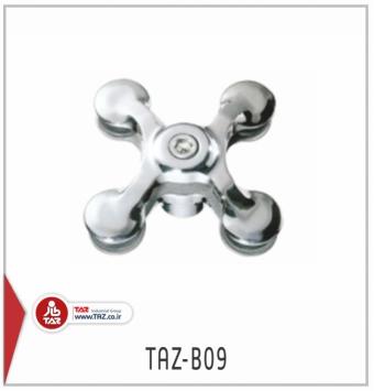 TAZ-B09