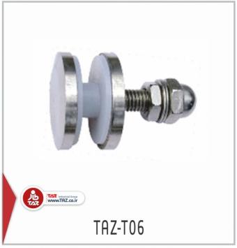 TAZ-T06