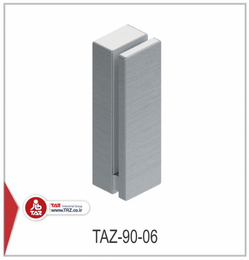 TAZ-90-06