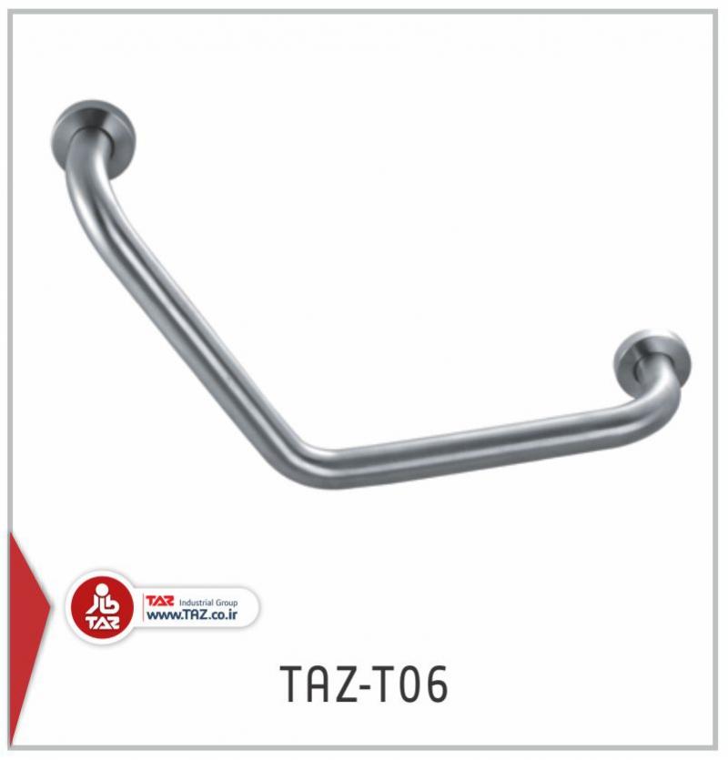 TAZ-T06.