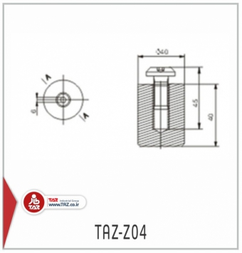 TAZ-Z04