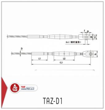 TAZ-D1