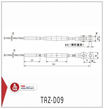 TAZ-D09