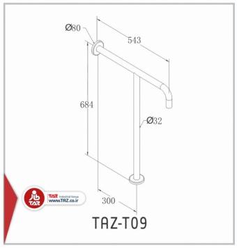 TAZ-T09
