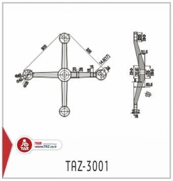 TAZ-3001